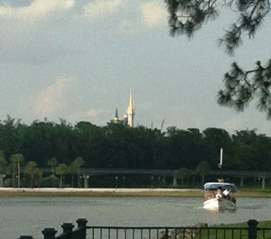 Magic Kingdom View